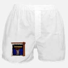 Commodore Skull On Ship's Sail Pirate Boxer Shorts