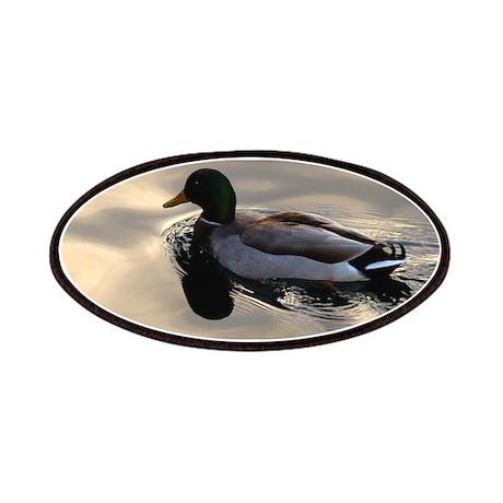 A Male Mallard duck swimming in silvery water Patc