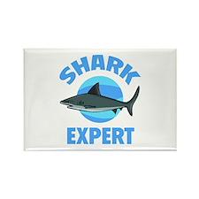 Shark Expert Rectangle Magnet