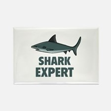 Shark Expert Rectangle Magnet