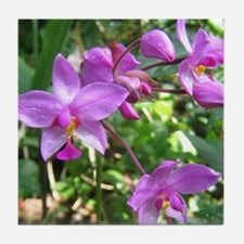 Purple Orchid Tile Coaster
