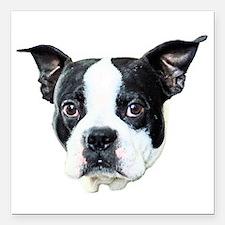 "Boston Terrier Square Car Magnet 3"" x 3"""