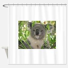 Helaine's Koala Bear Shower Curtain