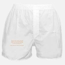Shauns plan Boxer Shorts