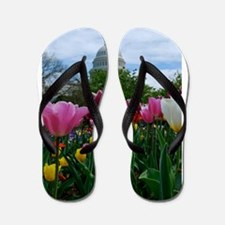 Capitol Dome over Tulips Flip Flops