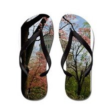 Capitol Amongst Cherry Trees Flip Flops
