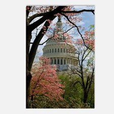 Capitol Amongst Cherry Trees Postcards (Package of