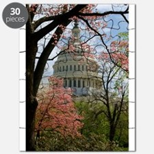 Capitol Amongst Cherry Trees Puzzle