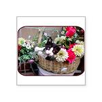 "Kitten in a Basket Square Sticker 3"" x 3&quot"