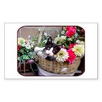 Kitten in a Basket Sticker (Rectangle 50 pk)