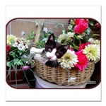 "Kitten in a Basket Square Car Magnet 3"" x 3&q"
