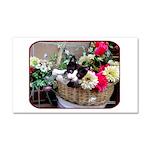 Kitten in a Basket Car Magnet 20 x 12