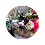 "Kitten in a Basket 3.5"" Button (100 pack)"