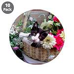Kitten in a Basket 3.5