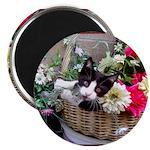 Kitten in a Basket Magnet