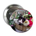 Kitten in a Basket 2.25