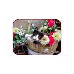 Kitten in a Basket 35x21 Wall Decal