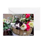 Kitten in a Basket Greeting Card