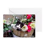 Kitten in a Basket Greeting Cards (Pk of 10)
