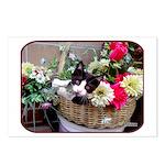 Kitten in a Basket Postcards (Package of 8)