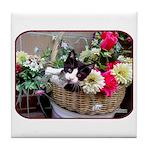 Kitten in a Basket Tile Coaster