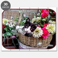 Kitten in a Basket Puzzle