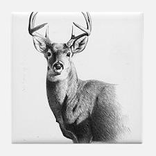 Whitetail Tile Coaster