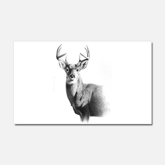 Whitetail Car Magnet 20 x 12