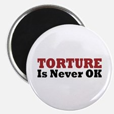 Torture Is Never OK Magnet