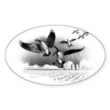 Canadian Geese Decal