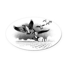 Canadian Geese Oval Car Magnet