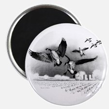 Canadian Geese Magnet