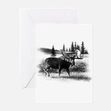 Northern Disposition Greeting Cards (Pk of 20)