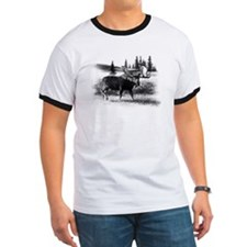Northern Disposition T