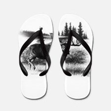 Northern Disposition Flip Flops