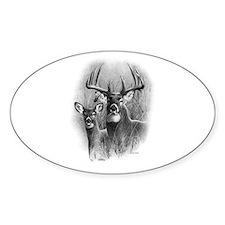 Big Buck Decal