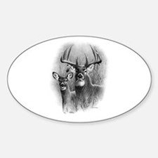 Big Buck Sticker (Oval)