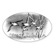 Pintails Decal