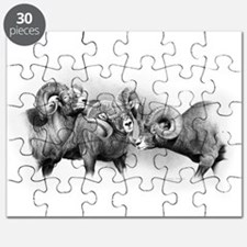 Rams Puzzle