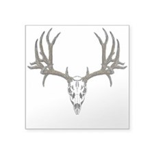 "European mount mule deer Square Sticker 3"" x 3"""