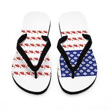 USA Patriotic Cat Flag Flip Flops