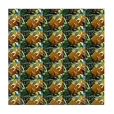 Pumpkins Tile Coaster