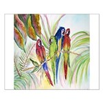 Parrots 10 x 10.png Small Poster