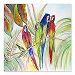 Parrots 10 x 10.png Square Car Magnet 3