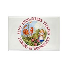 Alice Encounters Talkin Rectangle Magnet (10 pack)