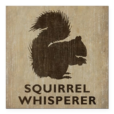 "Vintage Squirrel Whisperer Square Car Magnet 3"" x"