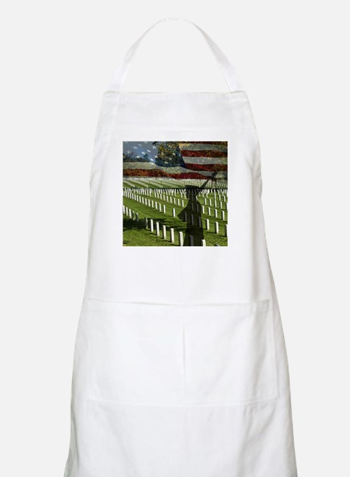 Guard at Arlington National Cemetery Apron