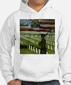 Guard at Arlington National Cemetery Hoodie
