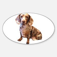 Spotty Dachshund Dog Oval Decal