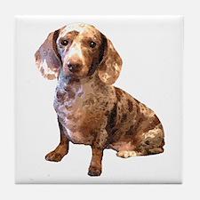 Spotty Dachshund Dog Tile Coaster